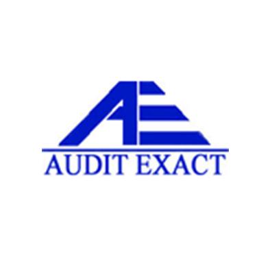 Audit Exact
