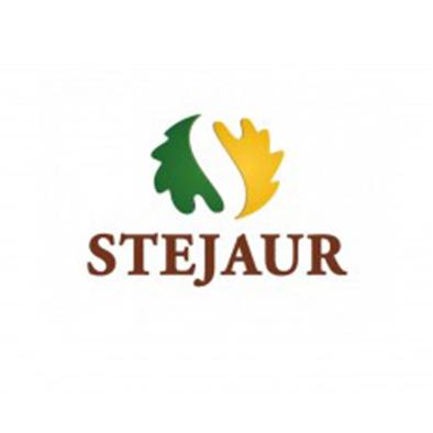 Stejaur