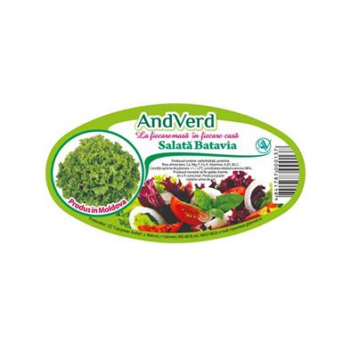 AndVerd