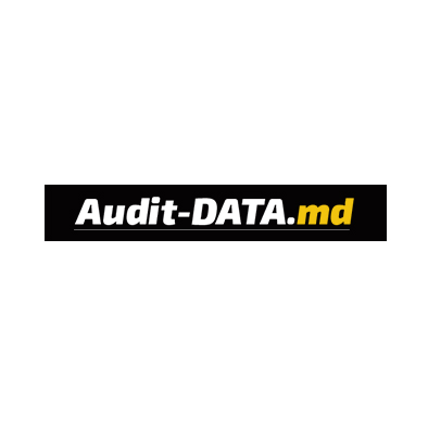 Audit data