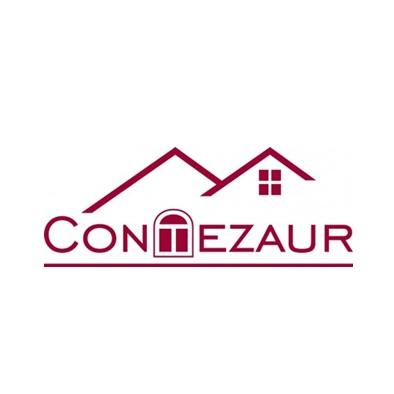Contezaur